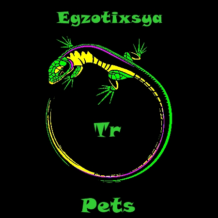 Egzotixsya TR Pets