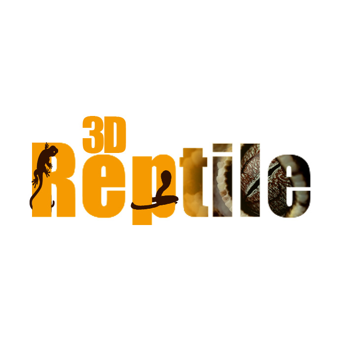 3dReptile
