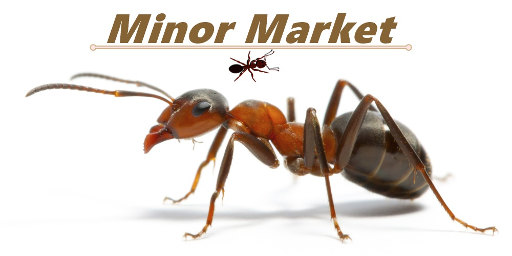 Minor Market