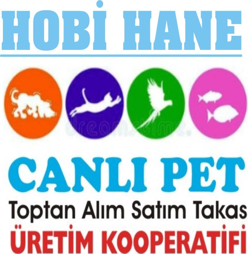 hobihane